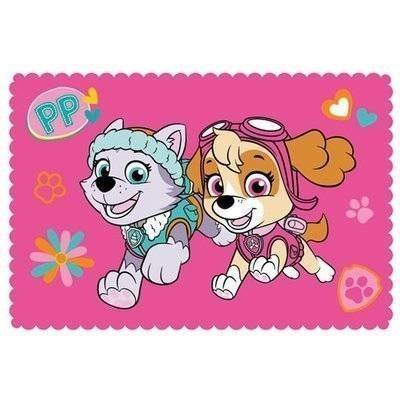 Paw Patrol Forever - Fleece plaid 100x150